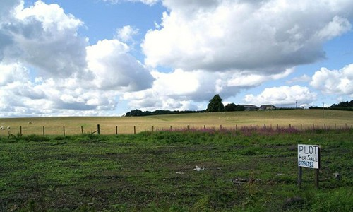 a Green Pasture